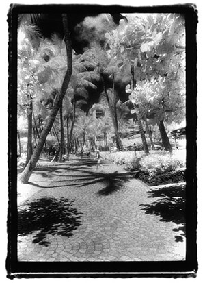 Walkway Paradiso