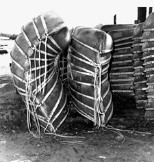 Canoes at Ding's Dock